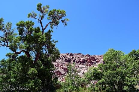 blue-and-green-desert