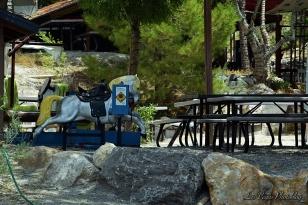 mountain-springs-saloon-8