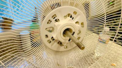 fan-2