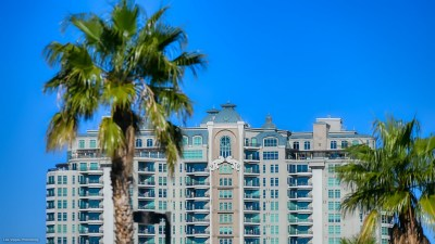 the Queens Ridge Condos with Palm Tree